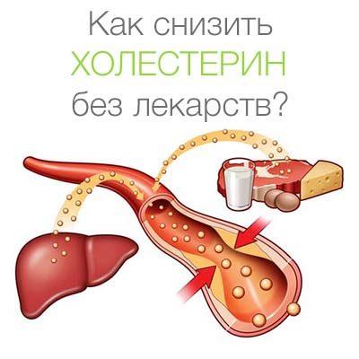 как снизить холестерин без лекарств ЛОГО