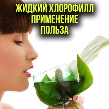 Хлорофилл Жидкий: применение, польза и вред