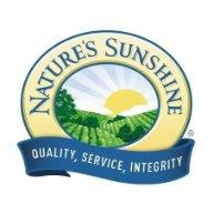 Официальный сайт NSP