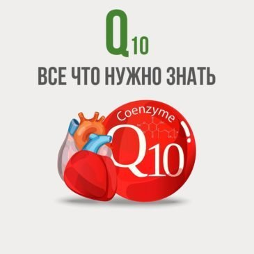 Коэнзим Q10: все что нужно знать