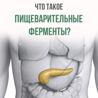 что такое пищеварительные ферменты